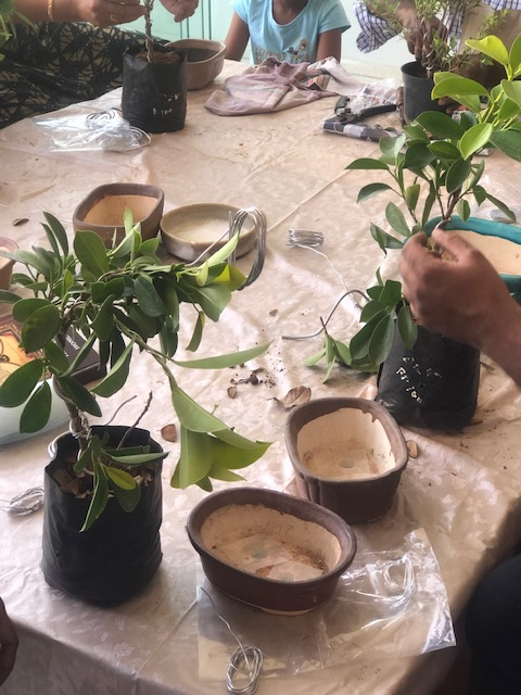 Bonsai workshop table